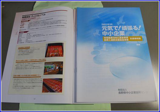 2010支援事例集